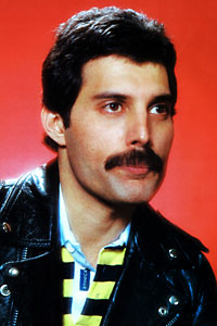 Freddy Mercury Chevron Mustache